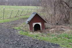Abandoned Dog House
